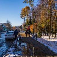 Первый снег :: Alexandr Яковлев