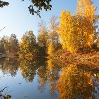 Отражение осени :: Кристина Константиновна