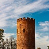 Каменецкая вежа :: Vadzim Zycharby