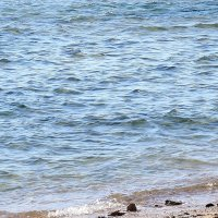 Хорошо... у моря...хорошо. :: Виктор Коршунов