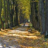 Осень :: Kate Bahdanovich