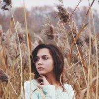 Высока трава. :: Варвара Фроловская