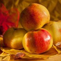 Натюрморт с яблоками. :: Ирина Токарева