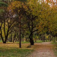 В парке :: Константин Бобинский