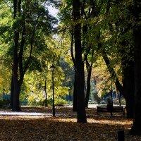 Киев. Осень 2014 г. Фото №18 :: Владимир Бровко