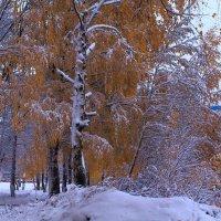 Зимняя сказка царственной Осени :: Татьяна Ломтева