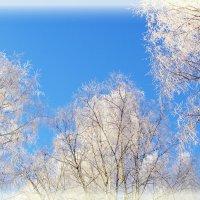 Зимний вальс... :: Элен .