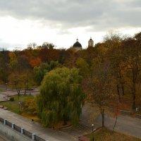 Осенний парк :: Татьяна Наманюк