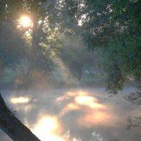 Утро туманное! :: Ирина Олехнович