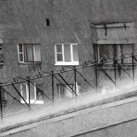 Ливень :: Владимир Федоров