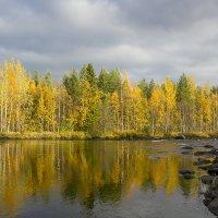 золото осени :: Владимир Иванов