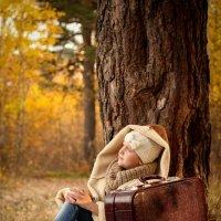 Маленькая путешественница :: Виктория Власова