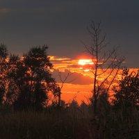 Осенний закат :: Павлова Татьяна Павлова