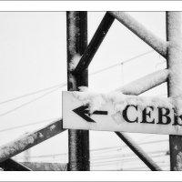 """№1 из серии """" СНЕГ... """" :: Светлана Лиханова"""