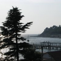 Чёрное море, Сочи. Хоста -2014 :: victor maltsev