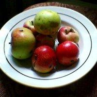 Яблочки :: Миша Любчик