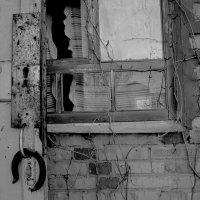 Забытое счастье заброшенной дачи... :: Валерия  Полещикова