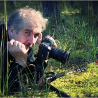 Вот такая она, фото охота :: Валерий Шейкин