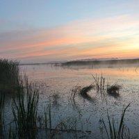 Утро на озере2 :: Андрей