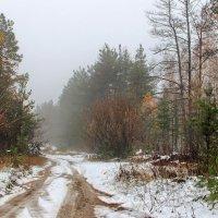 Когда апрель приходит в октябре... :: Лесо-Вед (Баранов)