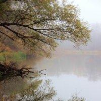 Отражаясь в памяти реки... :: Лесо-Вед (Баранов)