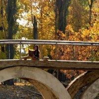 На мосту :: Владимир Болдырев