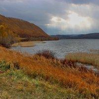 Рыжая осень. :: Наталья Юрова