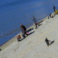 рыбаки и велосипед :: Валерий Дворников