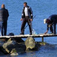 трое без лодки :: Валерий Дворников