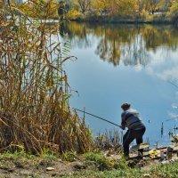 Азартный рыбак :: Лидия Цапко