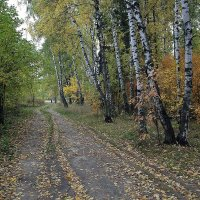 Осень в  Нахабино :: Евгений Мергалиев