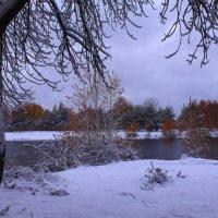 Снег землю укрывает покрывалом :: Татьяна Ломтева