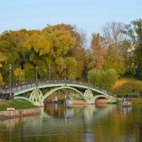 Правобережный мост в Царицыно. :: Ольга