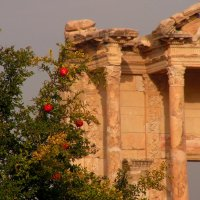 В античном Эфесе :: Елена Даньшина