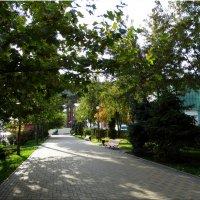 Октябрь на набережной...2 :: Тамара (st.tamara)