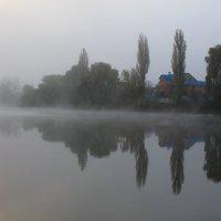 утро,туман :: Евгений Гузов
