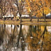 Чистые пруды ... :: Роман Шершнев