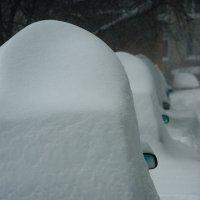 Снежные шапки с зеркальными ушами :: Алексей Обухов