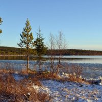 Подготовка к зиме :: Ольга