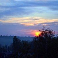 Утренний туман :: Натали