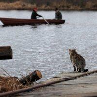 Яна Шраер - Рыба есть :: Фотоконкурс Epson