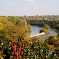 Осень :: Серёга Захаров