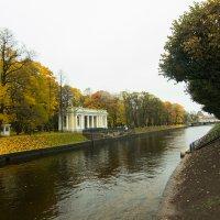 Петербургская осень :: Наталья Ерёменко