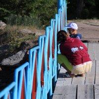 родительская любовь везде одинаковая :: Валерия Шайморданова