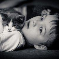 Вот, что значит Настоящий верный друг! :: Olga Vitman