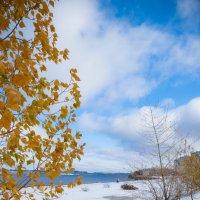 Зима в осени :: Мария Бизунова