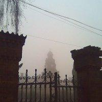 Черновицкий университет в тумане :: Яна Чепик