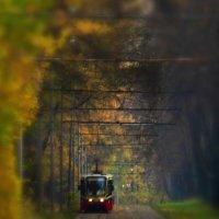Заблудившийся трамвай :: Aioneza (Алена) Московская