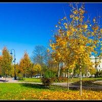 Осень в Царском Селе. :: Александр Лейкум