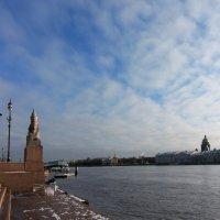 Небо Петербурга :: Вера Моисеева